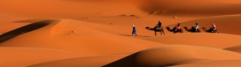 TOUR TUNISIA : TUNISI -  SIDI BOU SAID - CARTAGINE - AL - QAYRAWAN - TOZEUR - DOUZ E SOUSSE TOURS AFRICA
